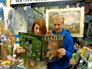 un libro, all about cats! at the first stall we stopped at